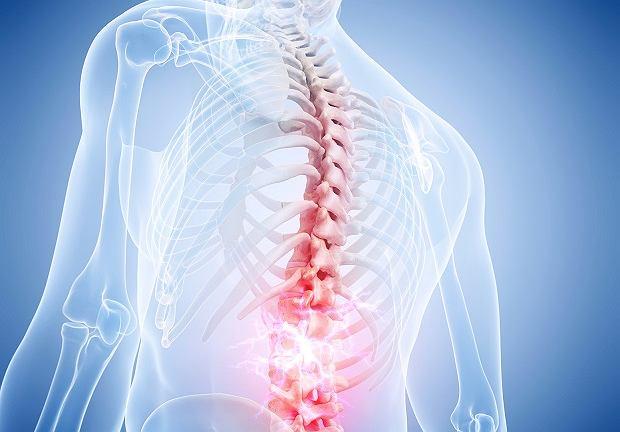 Fizjoterapia i Rehabilitacja – Zapraszamy do kardio.CLINIC